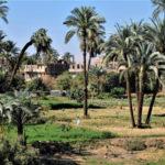 Nile Cruise on a Dahabiya Nile Valley